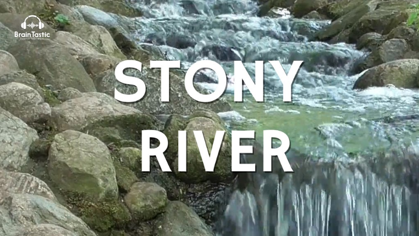 Water Flowing Down Rocks and Birds Chirping - 1 hour - Relaxing Water Sounds - Nature Sounds